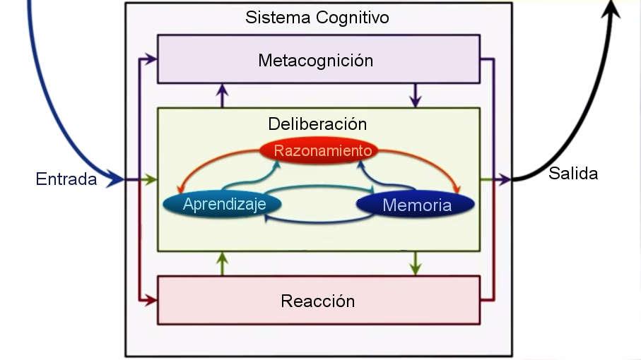 Gráfico sistema cognitivo