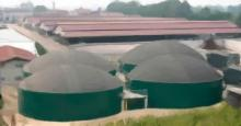 Planta de cogeneración de Biogas